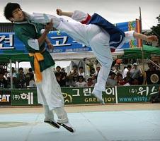 Twio momdolyo en Taekkyon